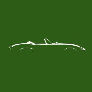 jaguar etype specialists